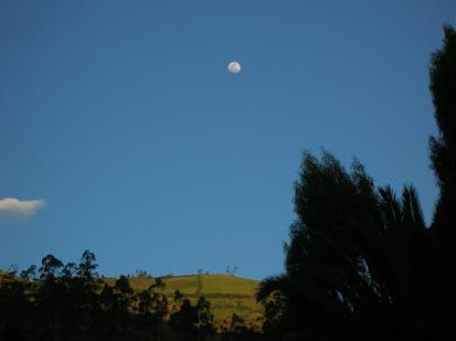Luna.- foto Acuario27