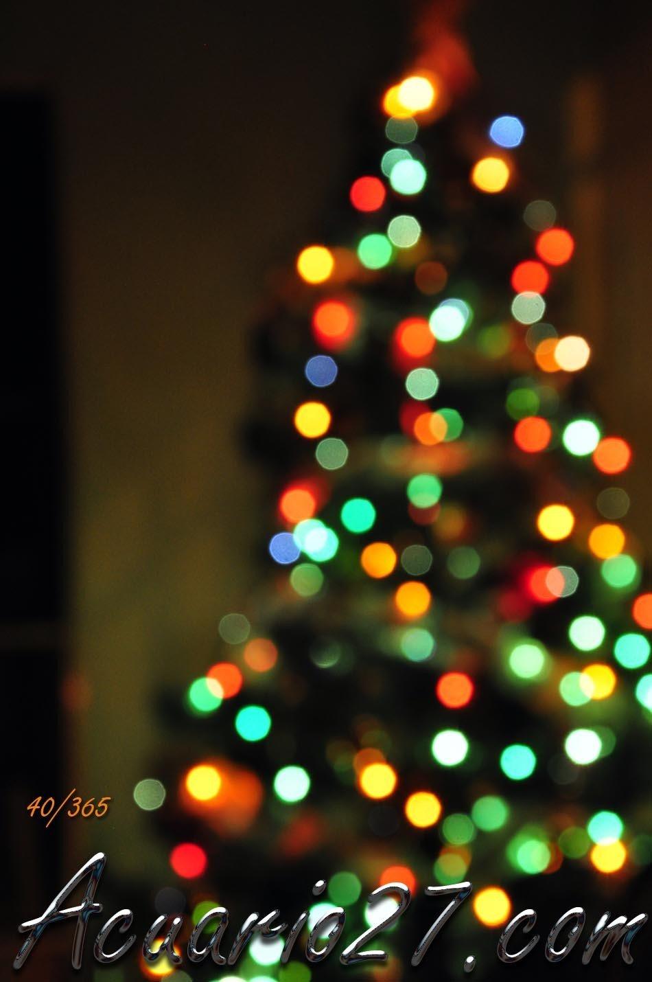 40/365 Feliz Navidad