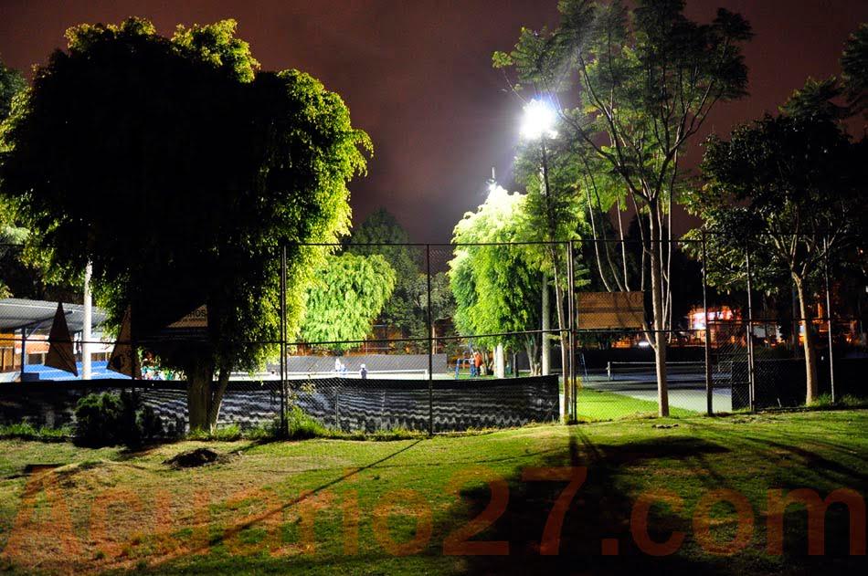 1/365 Luz y árboles