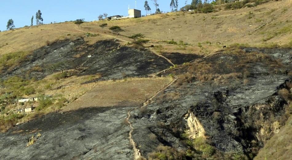 Incendio, lo que queda de la vegetación después de un incendio