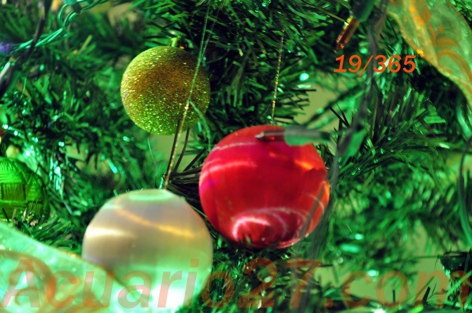 19/365 Navidad