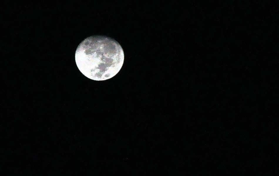 Luna.- Foto: Acuario27
