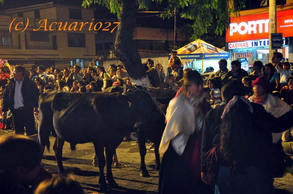 Comparsas y Carros, Pregón de fiestas Ibarra 2010, Foto Acuario27