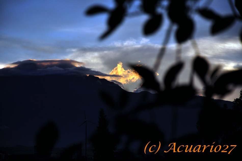 Contraste, Foto; Acuario27