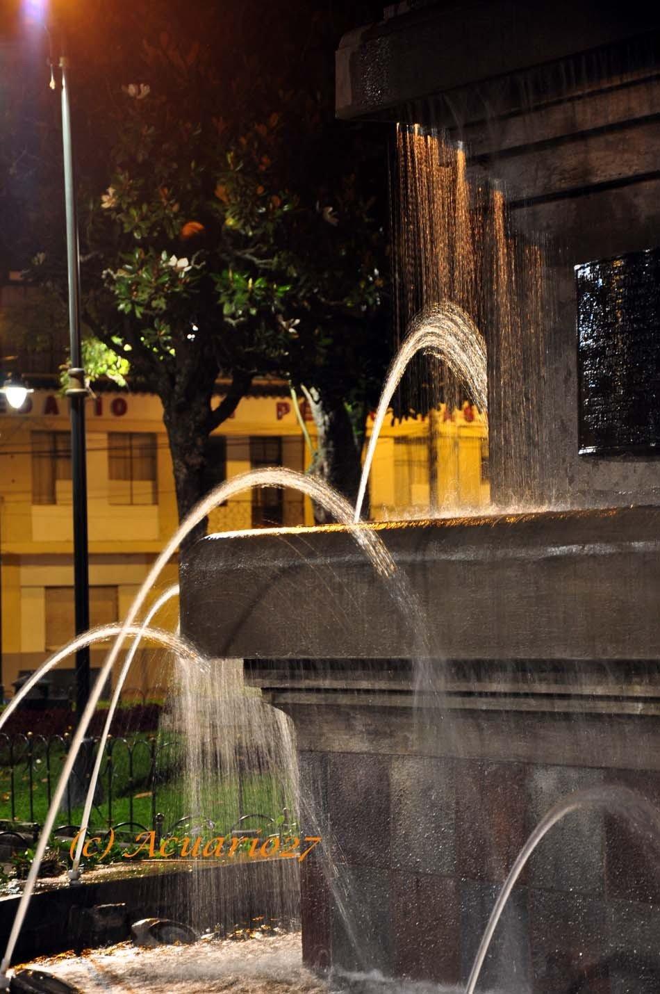 Agua.- Parque 9 de Octubre Ibarra. Foto Acuario27