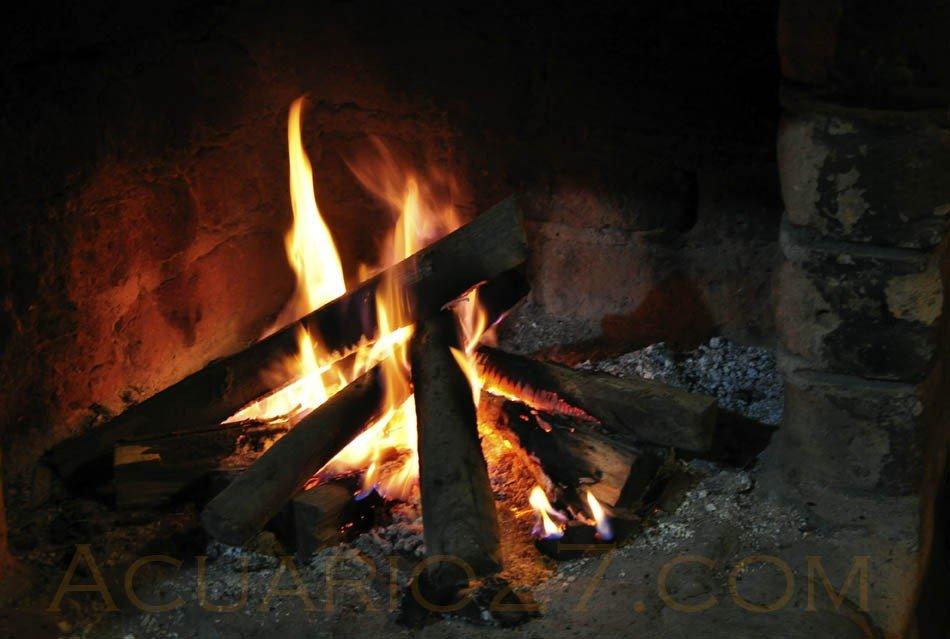 Fuego.- foto Acuario27