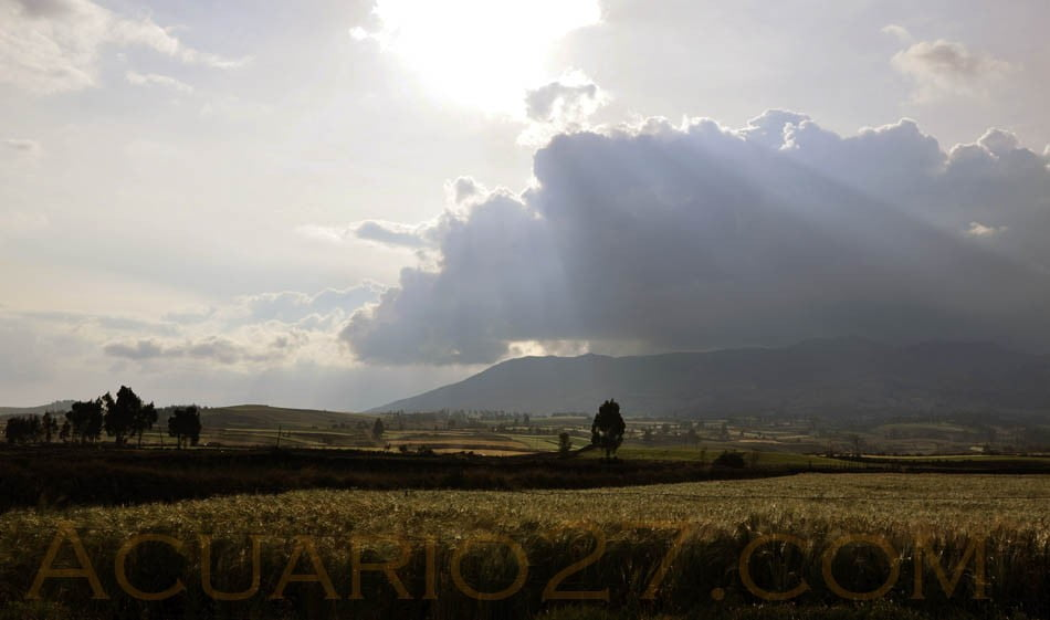 Rayo de sol.- foto Acuario27