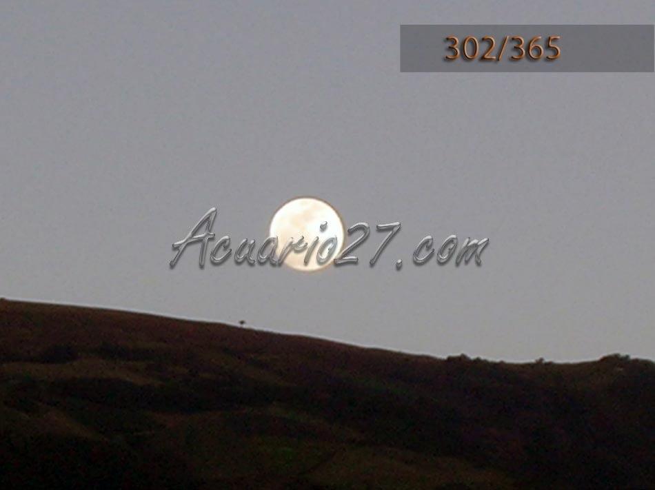 Luna. Foto Acuario27