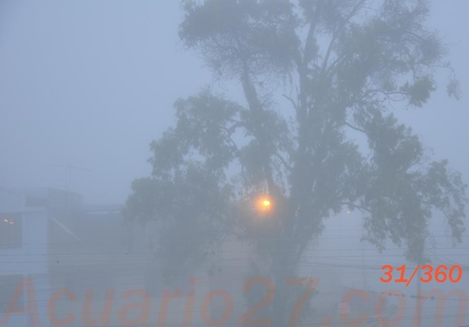 31/365 Niebla Foto Acuario27